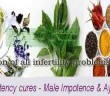 Natural-Impotency-cures---M